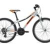 Bicicleta Junior Giant XTC JR 1 24