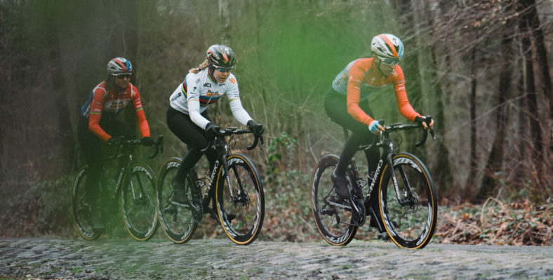 Nueva Specialized Roubaix 2020
